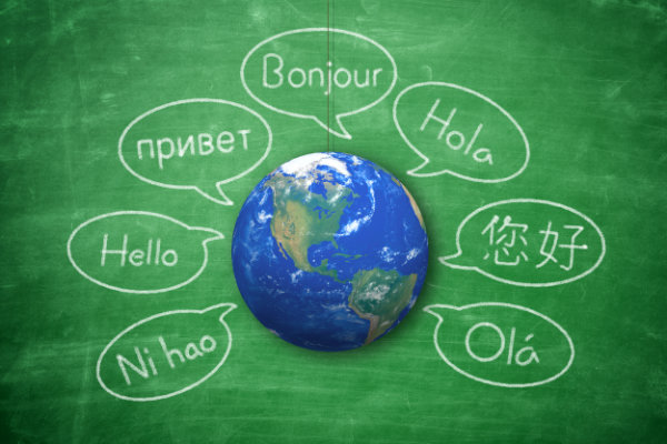 dicionário e tradutor online