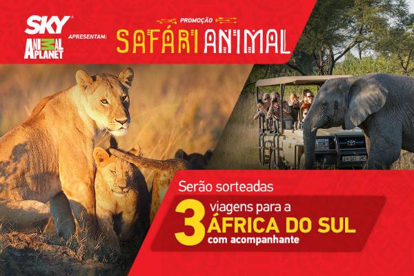 Promoção safári animal